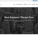 How to set up and use Business3ree theme
