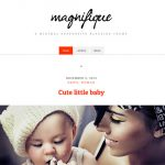 How to set up and use Magnifique theme