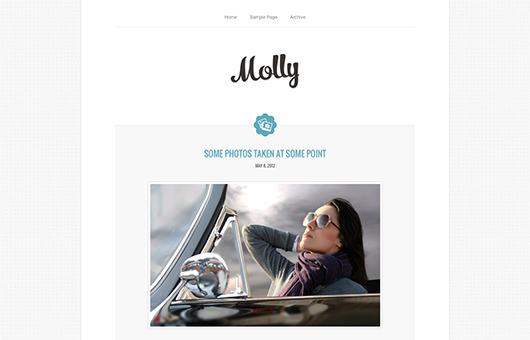 Molly laptop screenshot