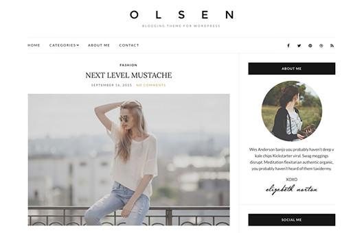 Olsen Light laptop screenshot