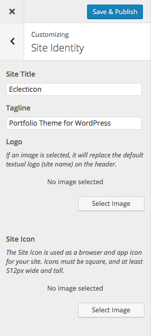 eclecticon-customizer-site-identity