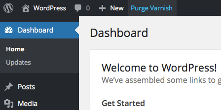 varnish-http-purge-initiate